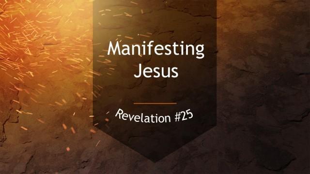 Rev #25